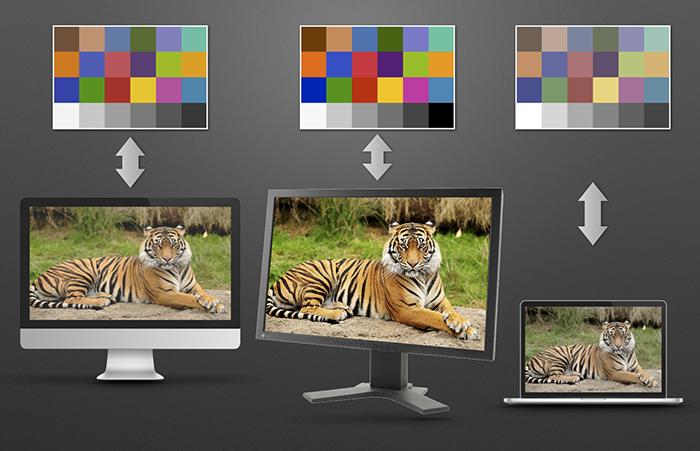 12 螢幕色彩管理觀念簡介